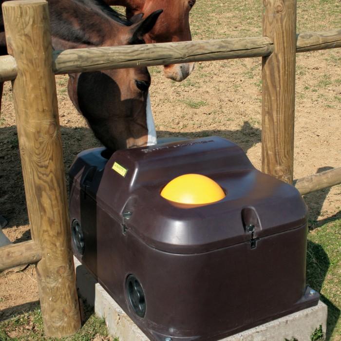Vattenautomat för häst