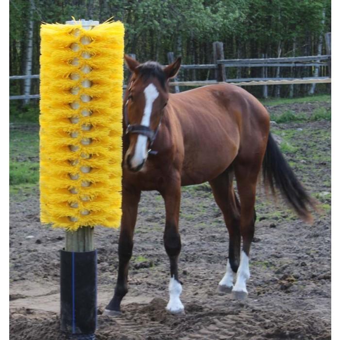 Borste för häst